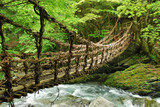 Fototapety Pont de lianes et bambou Kazura-bashi à Oku Iya, Shikoku