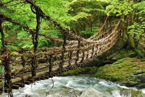Zdjęcia na płótnie, fototapety, obrazy : Pont de lianes et bambou Kazura-bashi à Oku Iya, Shikoku
