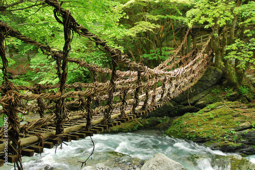 Pont de lianes et bambou Kazura-bashi à Oku Iya, Shikoku - 51087145