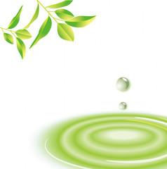 水面 グリーン