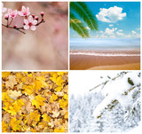 Fototapety Four season conceptual collage