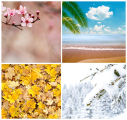 Four season conceptual collage
