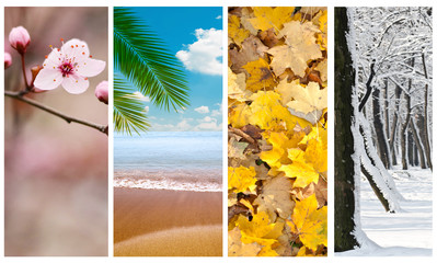 Four seasons collage