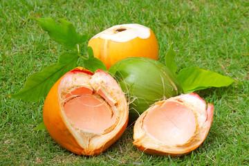 Kokosnüße