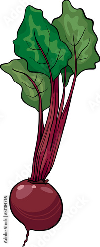 beet vegetable cartoon illustration