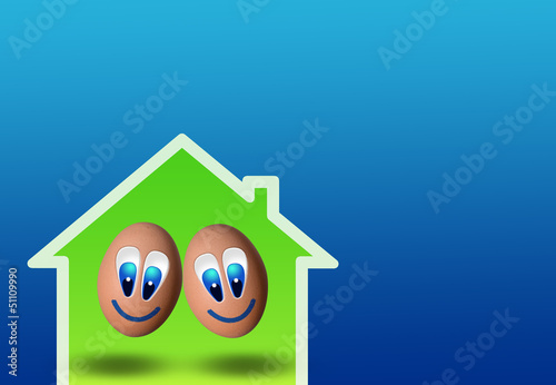 cute couple of eggs in low-power house
