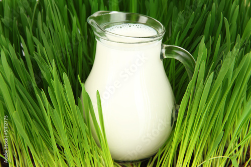Glass pitcher of milk standing on grass close up