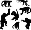 seven black isolated monkey silhouettes