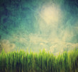 Vintage, retro image of nature landscape. Grunge canvas texture