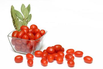 Pomidory 9