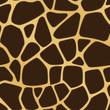 Giraffe Spotted Background