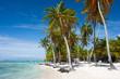 palm beach ocean sun