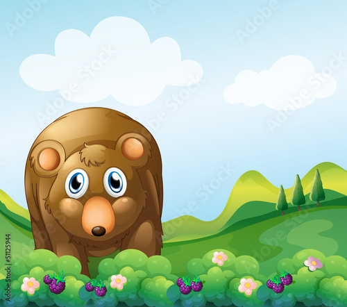 A brown bear at the garden