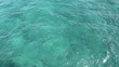 Tropical Florida Ocean Water