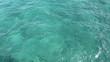 Tropical Florida Ocean Water