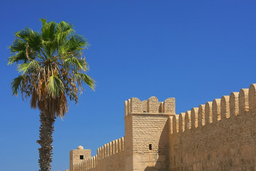 Castle and palm tree in Sousse