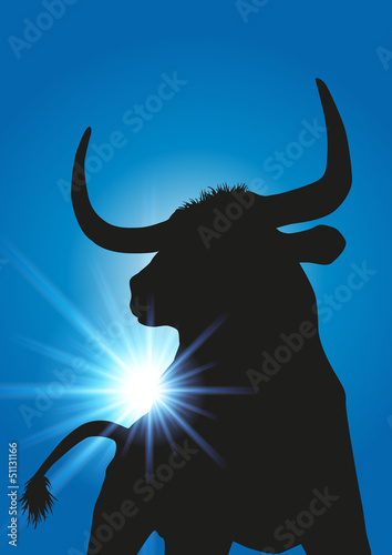 Taureau rayons de soleil - 51131166