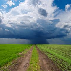 green rural field before a rain