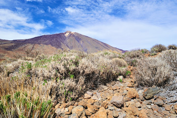 View of Teide
