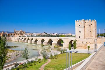 Famous Roman bridge and Guadalquivir river in Cordoba,  Spain.
