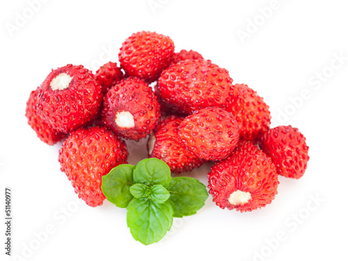 Strawberries_Fragaria vesca
