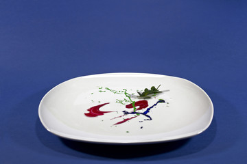White plate with paint  insead of food
