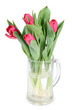 Bouquet tulips in cup
