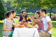 Friends enjoying a relaxing picnic - 51152794