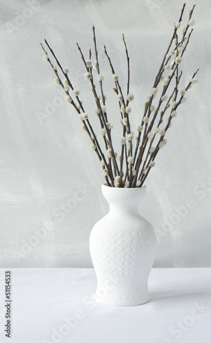Willow branches in a vase