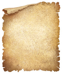 Vector of old crumpled paper.
