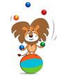 Lion juggling balls