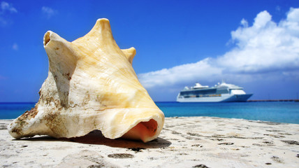 Conch and Ship