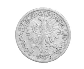 Polish coin on a white background