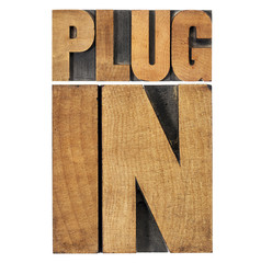 plugin (plug-in) in wood type