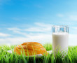 Fresh cinnamon bun and glass of milk on sky background