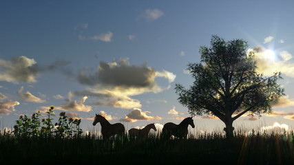 Tree on meadow and horses, time lapse clouds