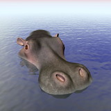 Hippopotamus in the water - 3D render