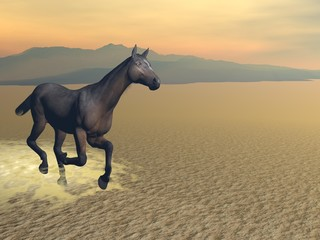 Freedom of the horse - 3D render