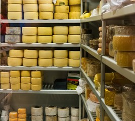 Shelves full of different cheese