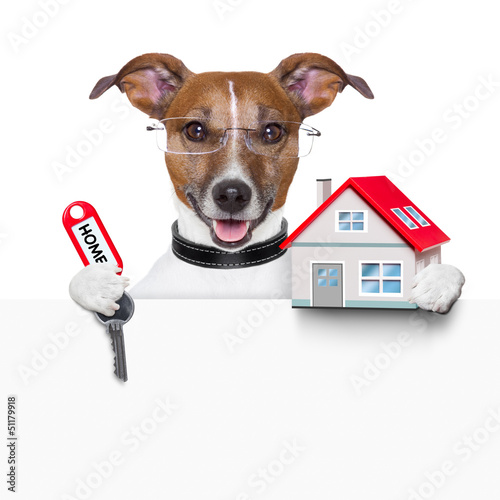 banner dog home and key