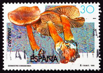 Postage stamp Spain 1995 Dermocybe Cinnamomea, Mushroom