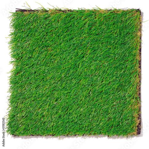 Leinwandbild Motiv Grünfläche