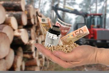 Thermostat und Geld mit Holzpellets in einer Hand