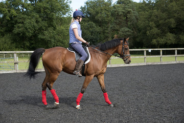 Woman rider exercising a horse in a paddock