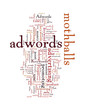 Do You What Is The Percentage Of People Using Adwords Profitably