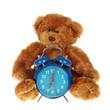ours en peluche avec réveil