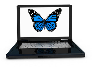 butterfly on a notebook