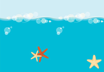 Starfish floating in the sea
