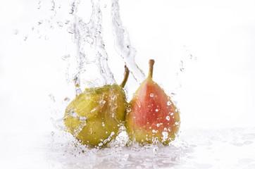 pere splash