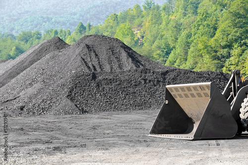 canvas print picture Stockpile of Coal